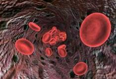 La Mayo Clinic ha sviluppato un nuovo strumento per il trapianto delle cellule staminali!