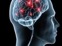 Staminali: Trattamento per il Parkinson pronto per test clinici!