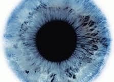 Staminali: Passi avanti nella riparazione dei tessuti della retina.