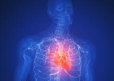 Staminali: Cominciano gli studi clinici che riguardano il cuore!