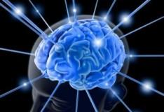 Staminali: Nuovo metodo per trattare le lesioni cerebrali in seguito a trauma!