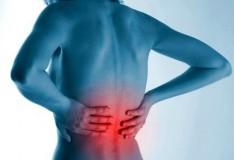 Le staminali contro il dolore alla schiena!