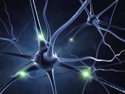 Due farmaci per i disturbi della pelle utili contro sclerosi multipla